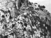 scala-fenicia-